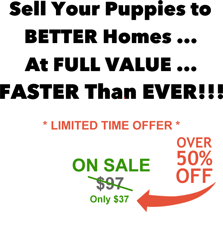 above-button-price-puppy-system